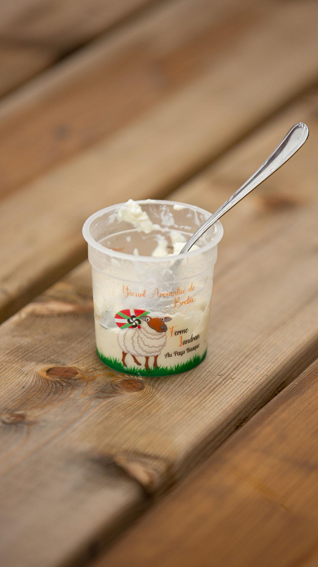 Yaourts de lait de brebis à la Ferme Landran